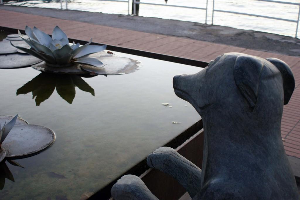озеро Изео Пизонье 18