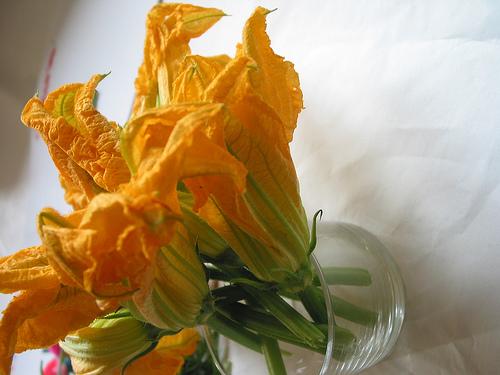 Farshirovanniye cvety kabachkov 4