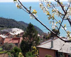 Италия в мае 2020: куда поехать, Венеция и пляжный отдых на море