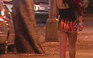"""Италия новости на сегодня 04.11.2011. """"Реклама"""" ночных бабочек"""