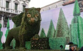 Восхитительный Венецианский Карнавал 2012 уже стартовал