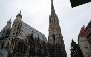 Магия утренней Вены