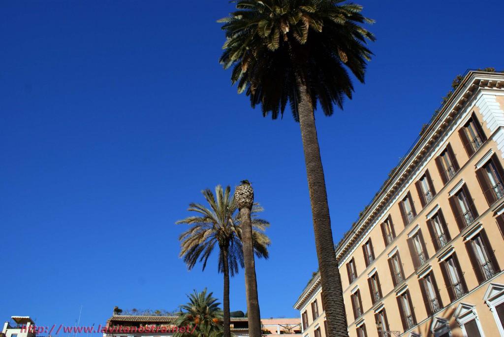 Площадь Испании 6