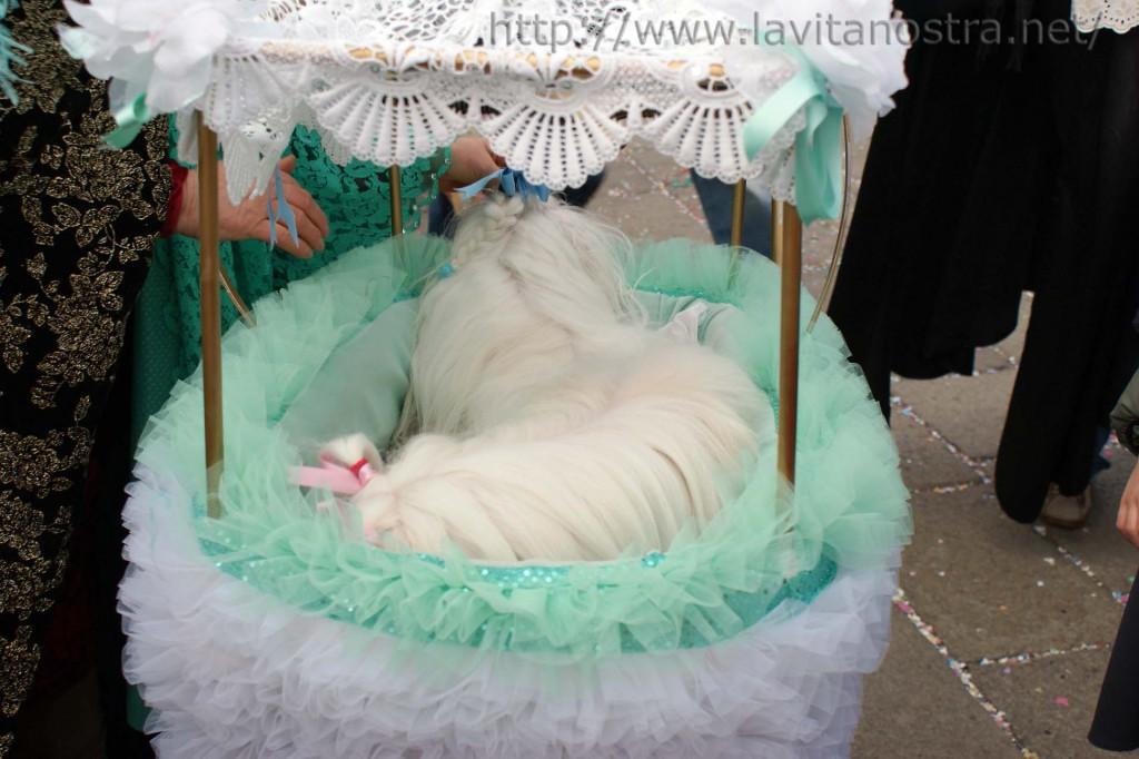 Венецианский карнавал 28