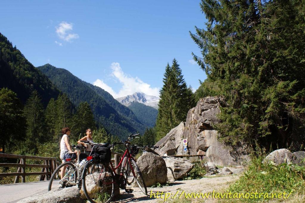 Trentino Alpi-1