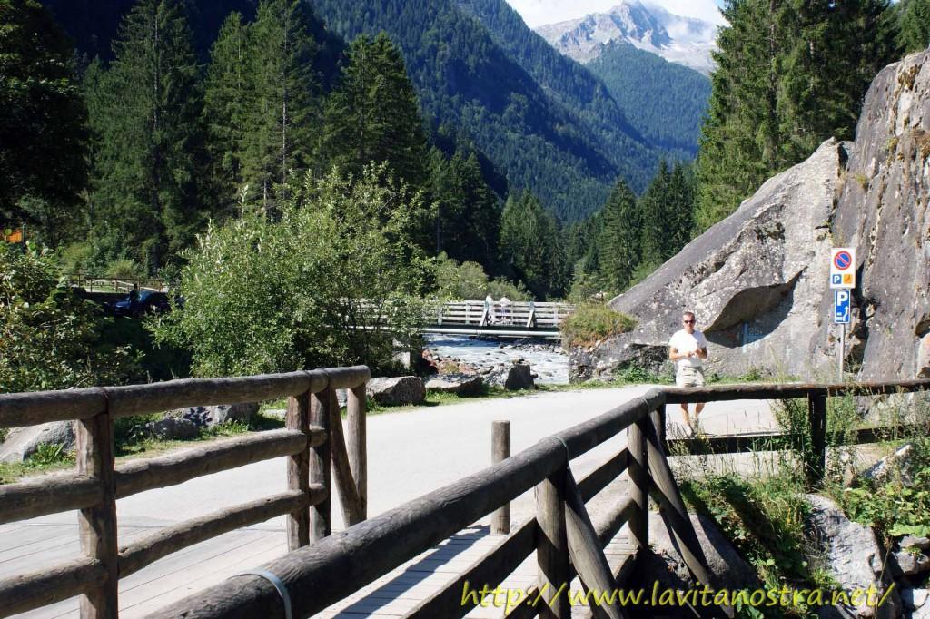 Trentino Alpi-6