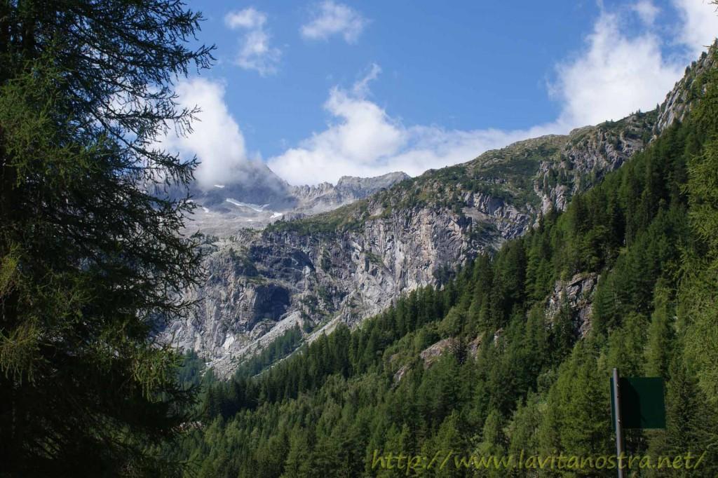 Trentino Alpi-20