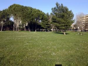 Rimini-2